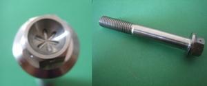 flens bout M8x60 (1mm gaatjes in bloem vorm)