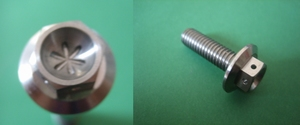 flens bout (1mm gaatjes in bloem vorm) M10x50